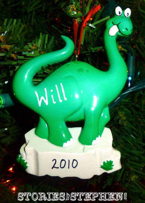 Our baby girl got a lot of attention, but we did not forget about Will in 2010!