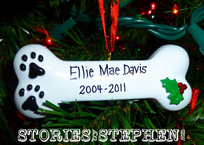 "Jennifer's ""1st Baby"", our dog Ellie died in 2011. It was a very traumatizing experience to find that Ellie had been killed by a coyote in the middle of the night."