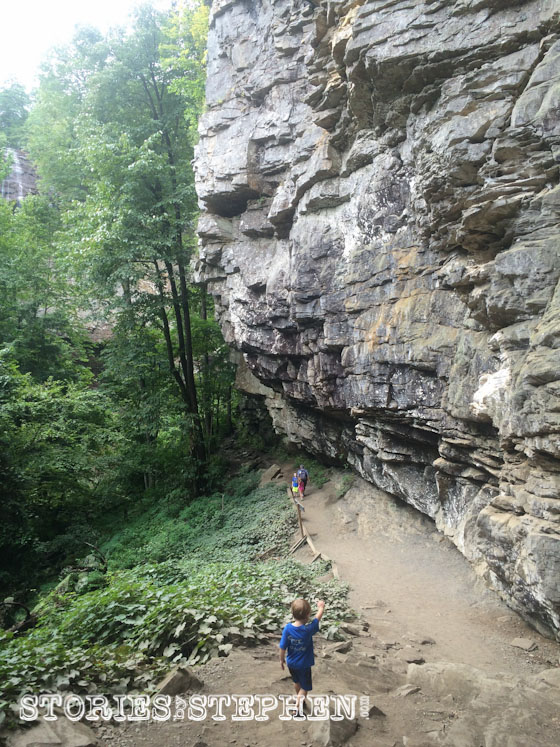 This was one of the more calm sections of the hike to the bottom of Fall Creek Falls.