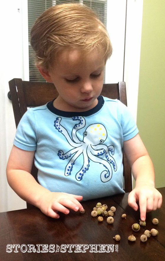 Sam is 3, and he can count to about 10. He needed Mommy's help, but he still loved counting all his acorns.