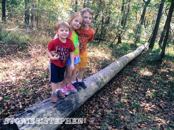The kids immediately found a giant log to play on behind our campsite.