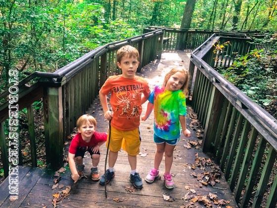 Hike #1 began on a long wooden boardwalk.
