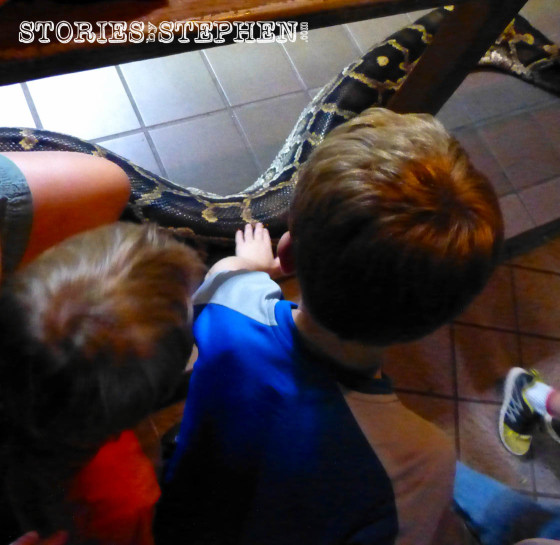 The boys petting a snake.