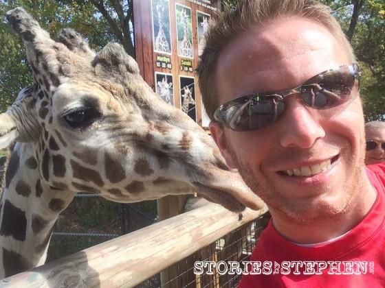 Giraffe selfie.