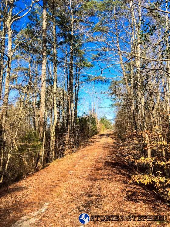 Trail Run Lake Guntersville State Park Tom Bevill-5-3