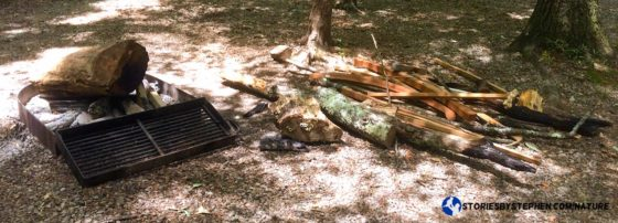 South Cumberland Camping Trip007-1-3