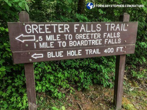 South Cumberland Camping Trip055-4-3