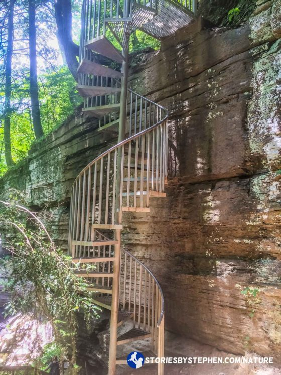 We were getting so close to Greeter Falls, and then we had to climb down this steep spiral staircase. The kids were all scared, but they knew it was the only way to get to the waterfall.