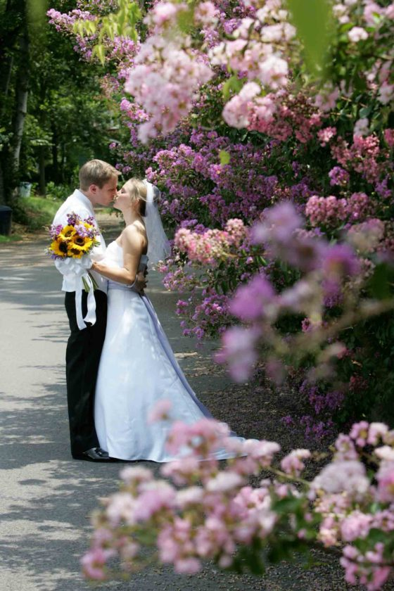 Wedding Pictures-13