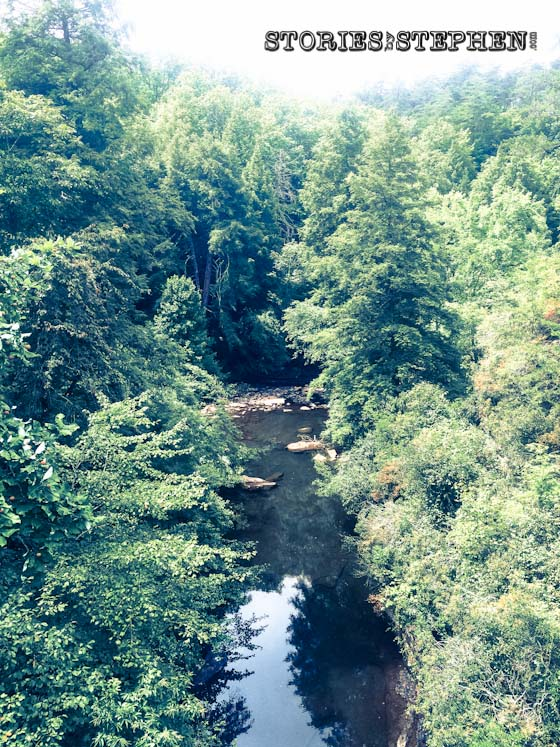 To get down to Piney Creek, we had to cross a long swinging bridge and climb down a steep hill.