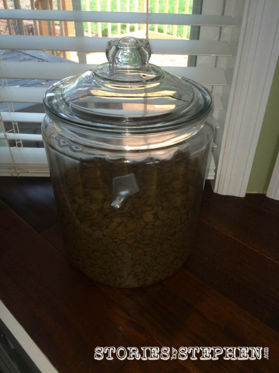 This giant glass jar holds our dog's food. It is at kid-level and gets used daily, but it does not scratch like my Apple Watch Sport.
