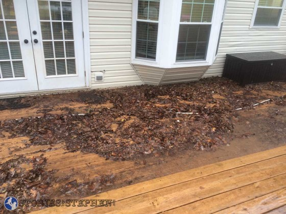 This is a fraction of the debris that washed up onto our back deck from the wooded area behind our yard.