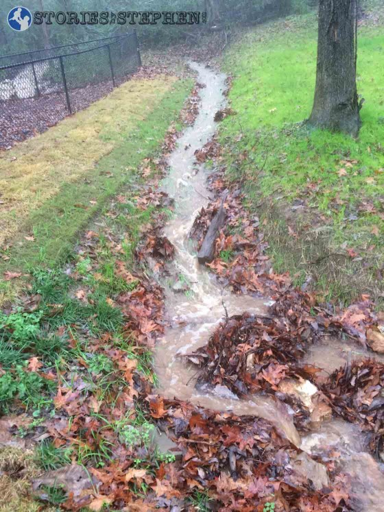 Water flowed along one side of our back fence.