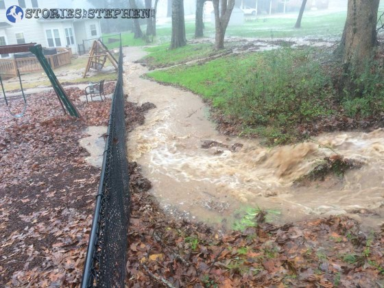 This stream of water was flowing hard along the back of our fence.