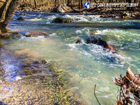 Cutchemine Trail Run (Lake Guntersville State Park) (WM)-14