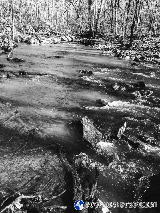 Cutchemine Trail Run (Lake Guntersville State Park) (WM)-15