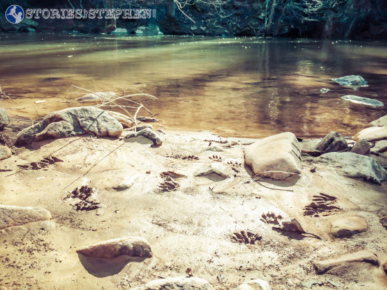 Cutchemine Trail Run (Lake Guntersville State Park) (WM)-25-3