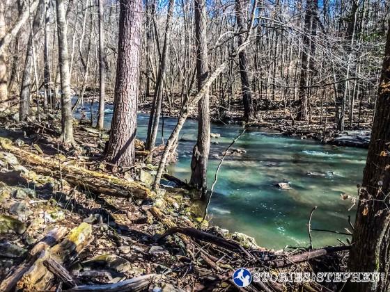 Cutchemine Trail Run (Lake Guntersville State Park) (WM)-26