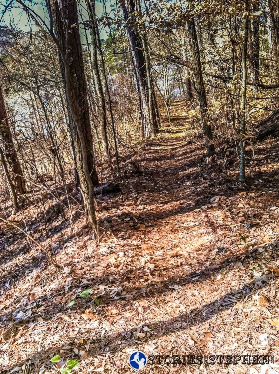 Cutchemine Trail Run (Lake Guntersville State Park) (WM)-28