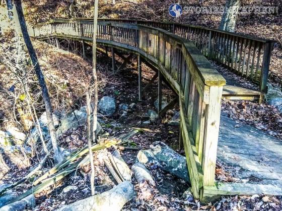 Cutchemine Trail Run (Lake Guntersville State Park) (WM)-3