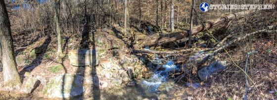 Cutchemine Trail Run (Lake Guntersville State Park) (WM)-30