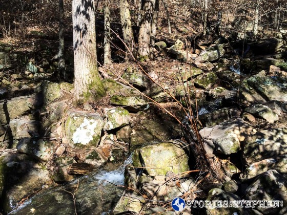 Cutchemine Trail Run (Lake Guntersville State Park) (WM)-31