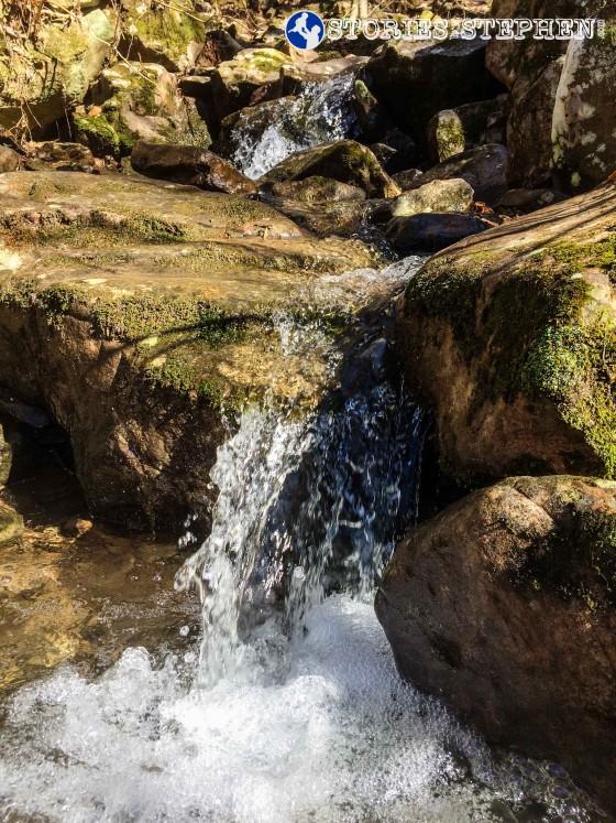Cutchemine Trail Run (Lake Guntersville State Park) (WM)-32-3