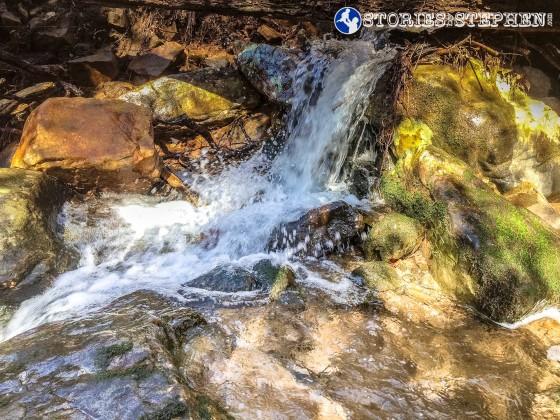 Cutchemine Trail Run (Lake Guntersville State Park) (WM)-35