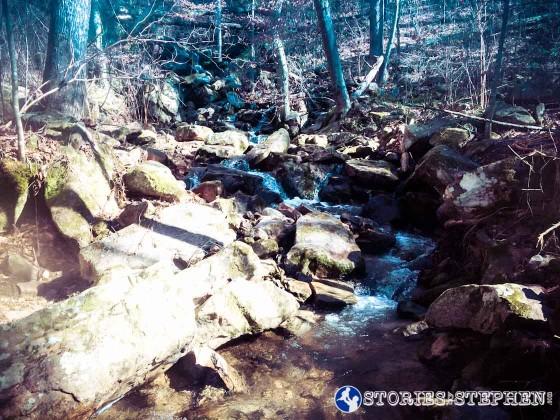Cutchemine Trail Run (Lake Guntersville State Park) (WM)-39