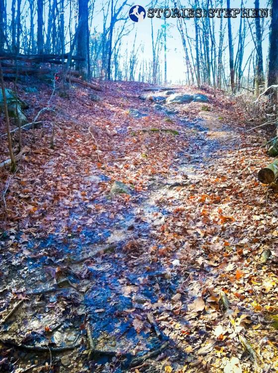 Cutchemine Trail Run (Lake Guntersville State Park) (WM)-4-4
