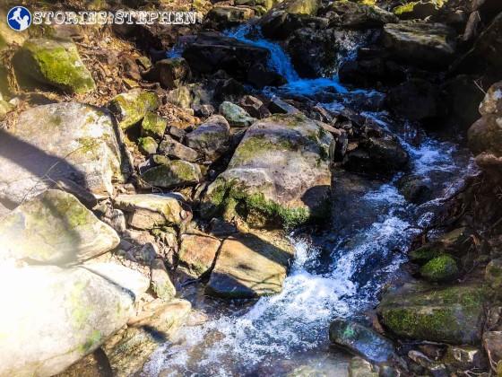 Cutchemine Trail Run (Lake Guntersville State Park) (WM)-41-2