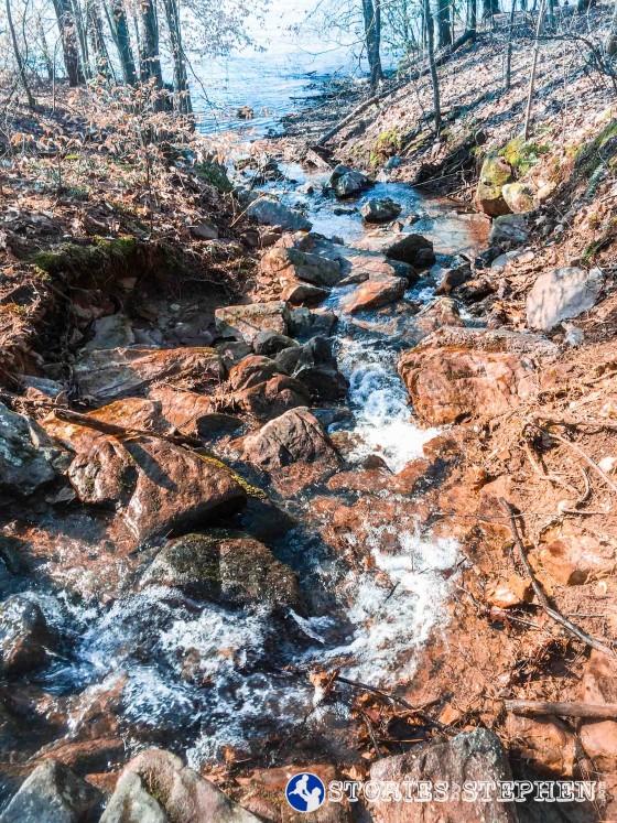 Cutchemine Trail Run (Lake Guntersville State Park) (WM)-6