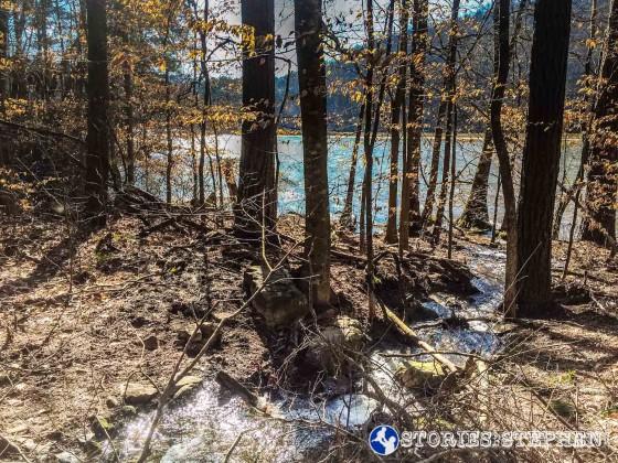 Cutchemine Trail Run (Lake Guntersville State Park) (WM)-8