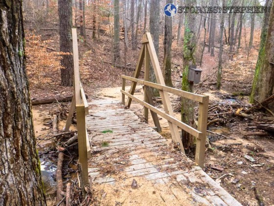 Unique wooden bridge on the Terrell Connector Trail, heading toward the Taylor Mountain Trail.