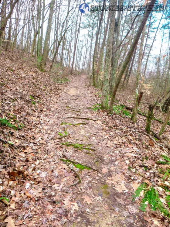 This uphill climb on King's Chapel Trail has plenty of roots trying to trip you.