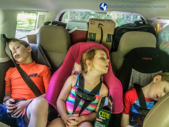 After gathering firewood, setting up camp and eating lunch, we drove to a trail to hike and search for swimming holes. The kids were so worn out from setting up camp that they all passed out in the car.