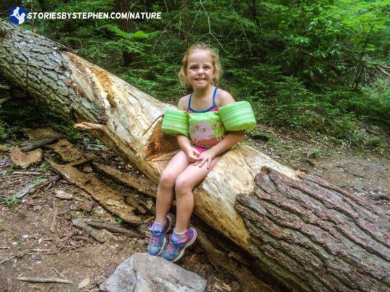 South Cumberland Camping Trip035-5-2