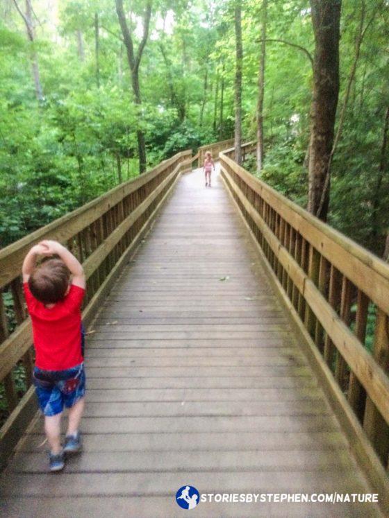 The kids love wooden boardwalks.