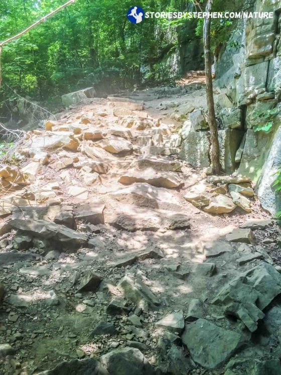 As we got closer to Greeter Falls, the trail got very rocky. This started to remind me of some of the waterfall hikes at Fall Creek Falls State Park.