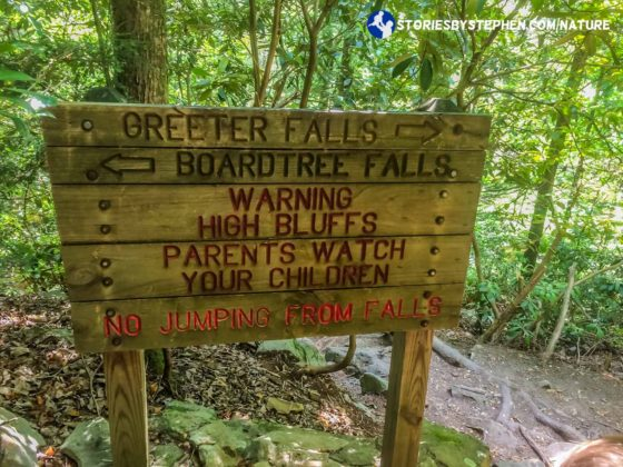 South Cumberland Camping Trip064-6-2