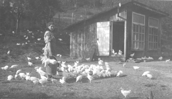 girl chicken coop